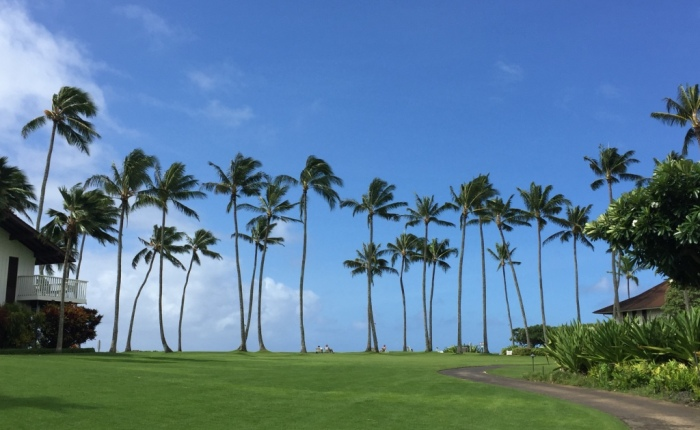 The Three Best Ways to See Kauai
